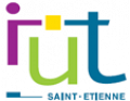 saint etienne university institute of technology